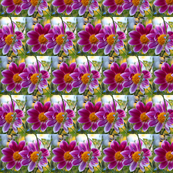 2 Purple Flowers