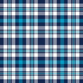 Blue Silver and White Plaid