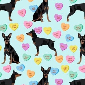 min pin candy hearts fabric - love fabric, dog fabric, min pin fabric, candy hearts fabric - blue