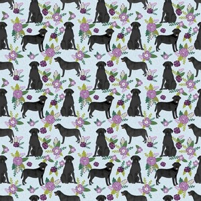 SMALL - black labrador coordinate pet quilt c dog breed floral labradors fabric