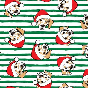Christmas Lemon Dalmatians - green stripes -  LAD19