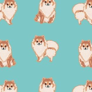 pomeranian dog fabric, pom dog fabric, pom dog, dog breed fabric dog  design - blue