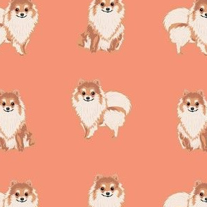 pomeranian dog fabric, pom dog fabric, pom dog, dog breed fabric dog  design - salmon