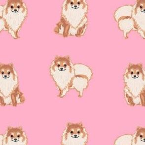 pomeranian dog fabric, pom dog fabric, pom dog, dog breed fabric dog  design - pink