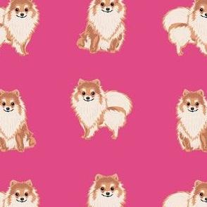 pomeranian dog fabric, pom dog fabric, pom dog, dog breed fabric dog  design - bright pink
