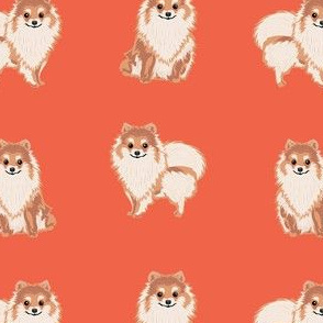 pomeranian dog fabric, pom dog fabric, pom dog, dog breed fabric dog  design - orange