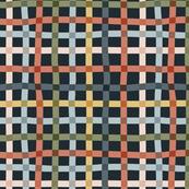 Multicolor Check