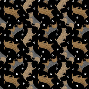 Trotting Australian Terriers and paw prints - black