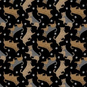Trotting undocked Australian Terriers and paw prints - black