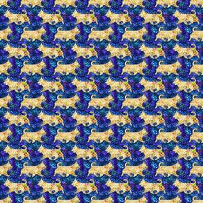 Cosmic Trotting undocked Australian Terriers - night