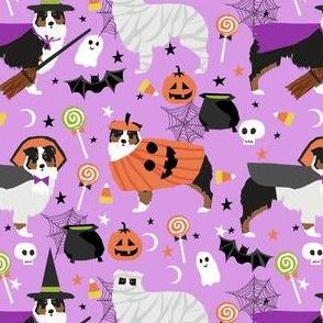 aussie dog halloween fabric - australian shepherd dog fabric,  australian shepherd halloween costume - black tri -  lavender