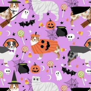 aussie dog halloween fabric - australian shepherd dog fabric,  australian shepherd halloween costume - blue and red merle -  lavender