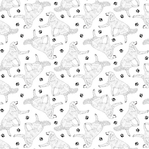 Trotting Kuvasz and paw prints - white