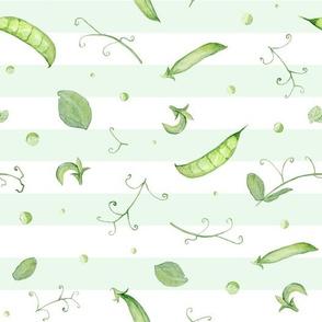 Green Peas on stripes