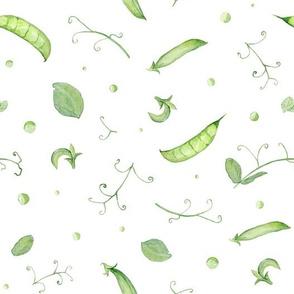 Green Peas on white
