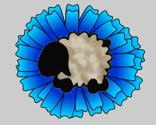 Rconeflower-blue-sheep_thumb