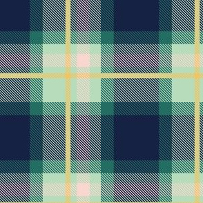 Blue and Yellow Plaid V.06