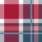 HotPink and Pale Blue Plaid V.03