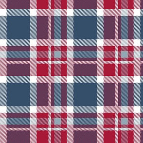 HotPink and Pale Blue Plaid V.05