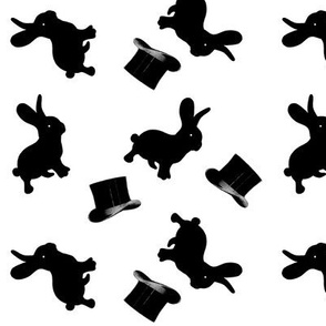 Black Rabbits and Top Hats