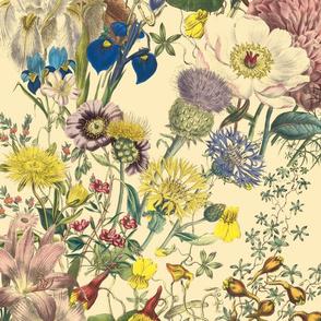Bloomin' Lovely ~ Trianon Cream ~ Medium