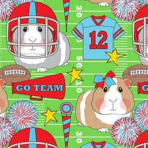 cheerleader and football guinea pigs