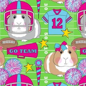 fuchsia cheerleader and football guinea pigs