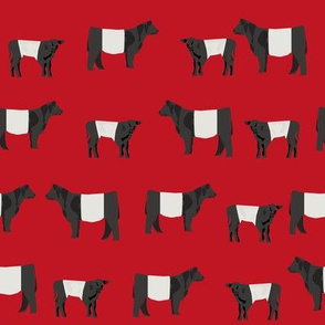 belted galloway fabric, belted galloway cow, cow fabric, cattle fabric, farm fabric, farm animals fabric, farm fabric by the yard, farm animals - red