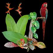 melange23 free bird