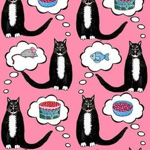 Catnip cats daydream //  Tuxedo cats on kitty krack ( catnip) ;)