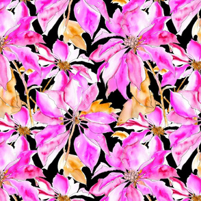 Tropical Poinsettia - black