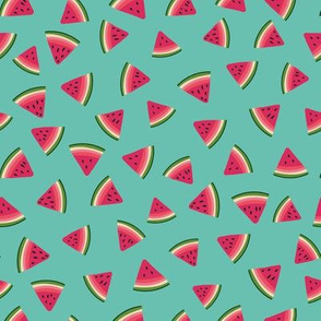 watermelon slices in vibrant colors