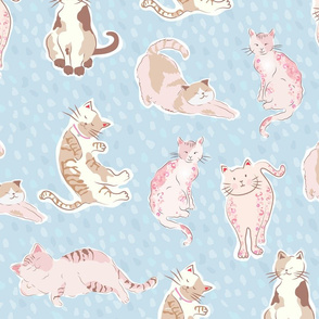 Cute kittens-blue
