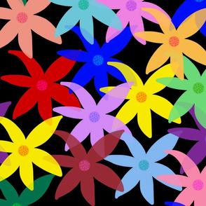Shabby Chic Rainbow Daisies! Black, Medium