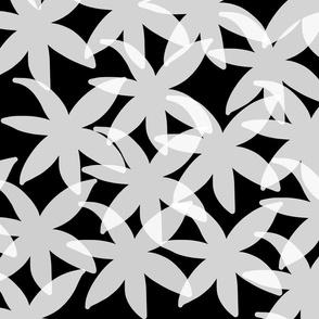 Shabby Chic Midnight Daisies! White on black, medium