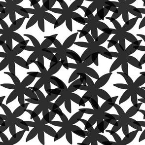 Shabby Chic Midnight Daisies! Black on white, small