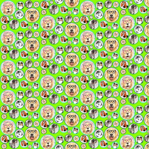 dogs lime green