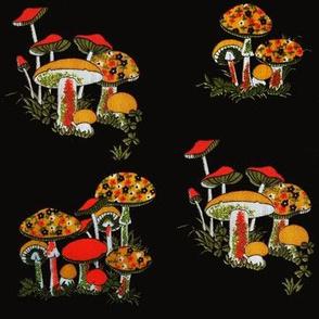 70s Mushroom (Fall)