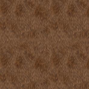 Furry 4