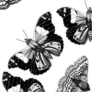 Moth Mandalas Black & White