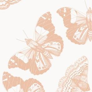 Moth Mandalas Peach