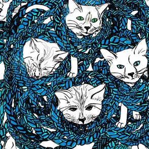 Tangled Cats