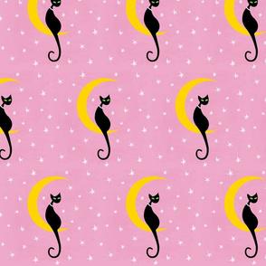Kitty Moon