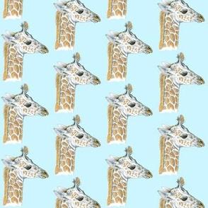 Custom Baby Giraffe 2 inch