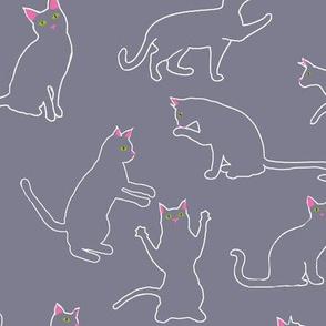 Cats Grey