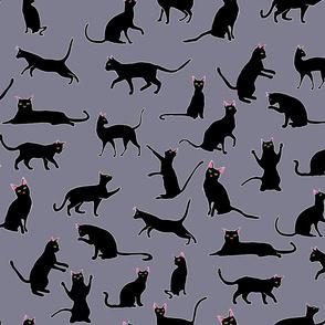 Cats Black Grey