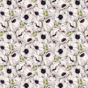 Grey Anemones - 039