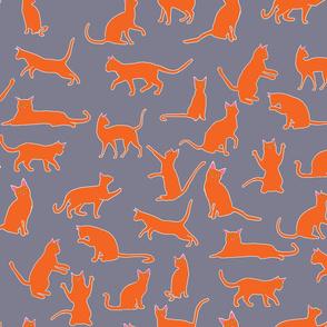 Cats Orange Grey