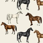 Vintage Horses Hand Coloured, Large