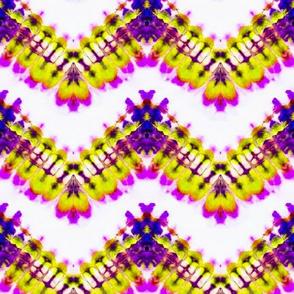 Vibrant Condor Wings